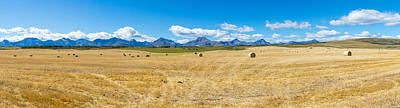 Bale Photograph - Hay Bales In A Field With Canadian by Panoramic Images