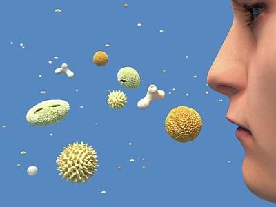 Hay Fever Art Print by Juan Gaertner