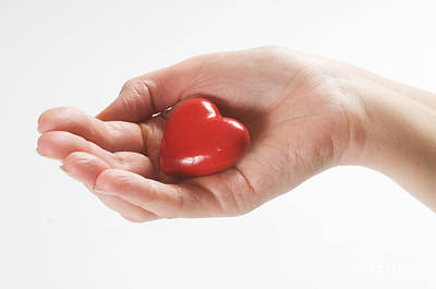 Female Photograph - Heart In Hand by Michal Bednarek