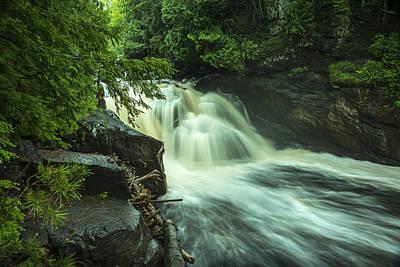Photograph - Heart Of Wilderness by Christopher Burnett