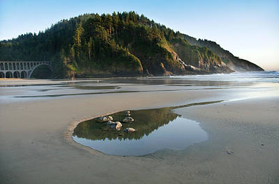Photograph - Heceta Head Reflection 2 by Lara Ellis