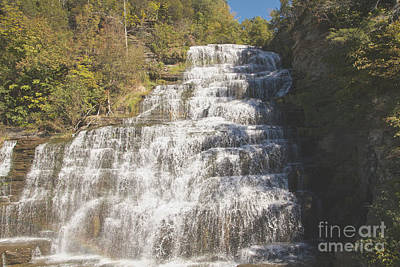 Photograph - Hector Falls by William Norton