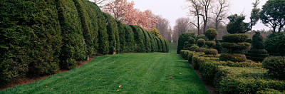 Maryland Photograph - Hedge In A Formal Garden, Ladew Topiary by Panoramic Images