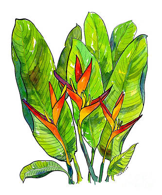 Bananas Painting - Heliconia by Diane Thornton