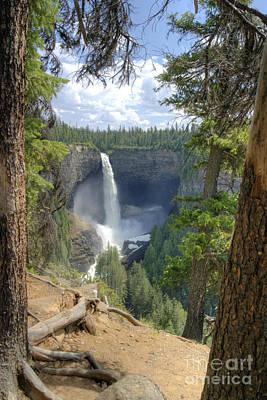 Photograph - Helmcken Falls by David Birchall