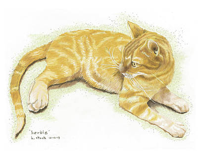 Orange Tabby Drawing - Herbie by Kenneth Stock