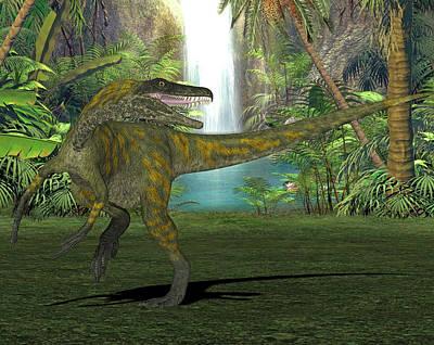 Herrerasaurus Dinosaur Art Print