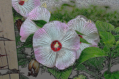 Digital Art - Hibiscus Giants  by Kathleen Stephens