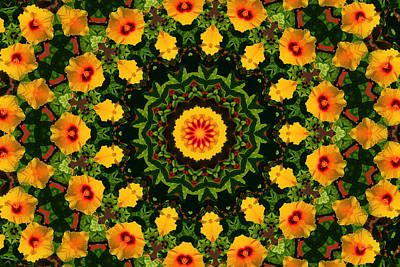 Photograph - Hibiscus Kaleidoscope by Bill Barber