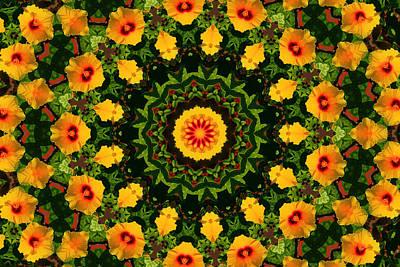 Photograph - Hibiscus Kaleidoscope by Bill Barber