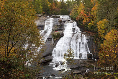 Photograph - High Falls In The Dupont State Forest by Jill Lang