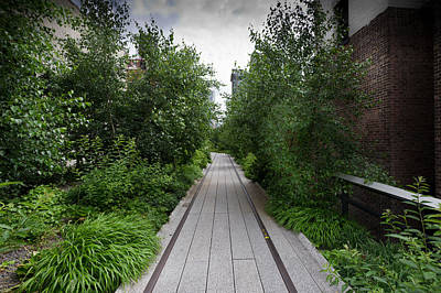 Photograph - High Line Nyc by Gary Eason
