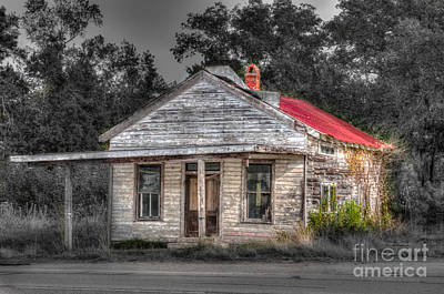 Photograph - Sc Highway 17 Shack by Dale Powell