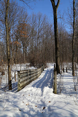 Photograph - Hiking Trail Bridge With Shadows 3 by Mary Bedy