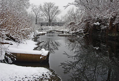 Hill Park Stream In Winter Art Print by Ellen Tully
