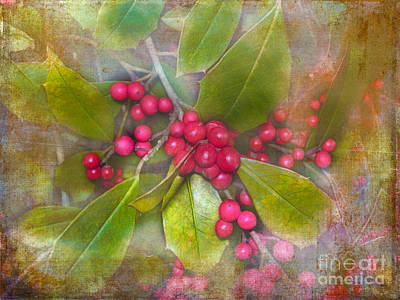 Photograph - Holly Berries by Judi Bagwell