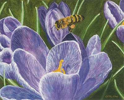 Painting - Honeybee Flying Over Crocus by Lucinda VanVleck