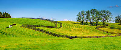 Horse Fence Photograph - Horse Farm Fences by Alexey Stiop