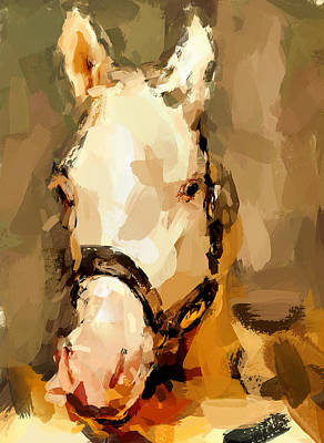 House Pet Digital Art - Horse Portrait by Yury Malkov