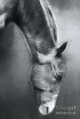 Horse Profile Art Print