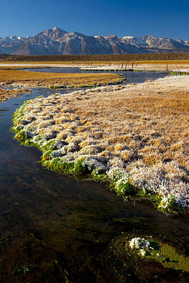 Hot Creek Photograph - Hot Creek In Winter by Joe Doherty