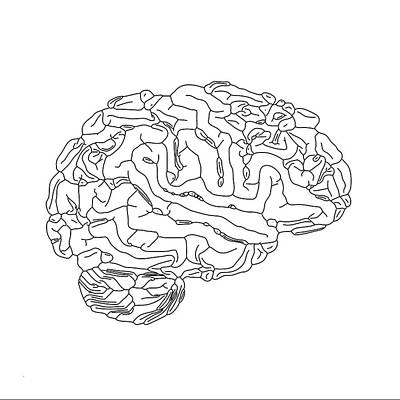 Human Brain Art Print by Russell Kightley
