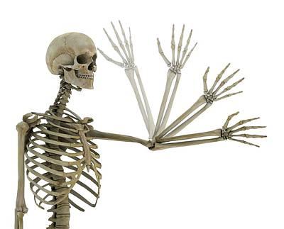 Articulation Photograph - Human Elbow Joint by Mikkel Juul Jensen
