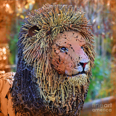 Photograph - I Am King by Kathy Baccari