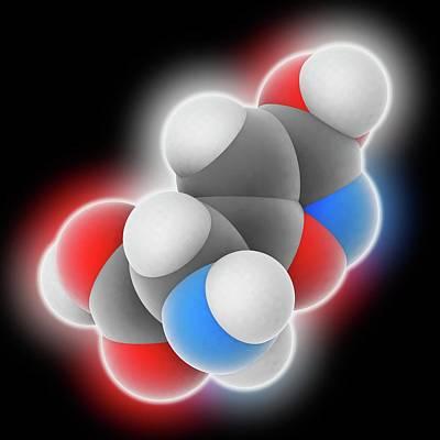 Amanita Mushroom Photograph - Ibotenic Acid Drug Molecule by Laguna Design