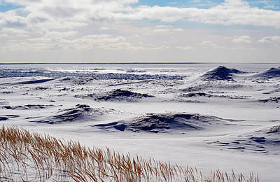 Uncle Sam Posters Rights Managed Images - Ice on Lake Michigan Royalty-Free Image by Linda Kerkau