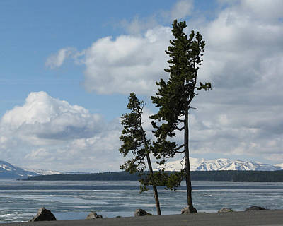 Photograph - Ice On Yellowstone Lake by Patricia Januszkiewicz