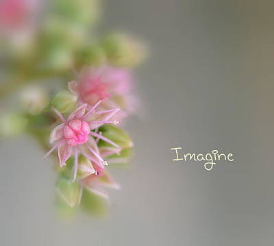 Imagine Now Art Print