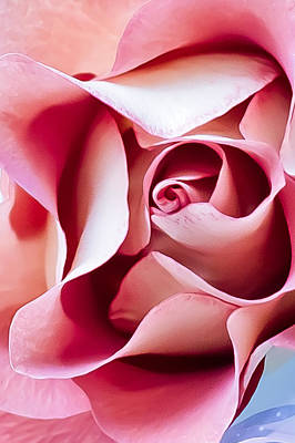 Photograph - In Depths Of A Rose by Elvira Pinkhas