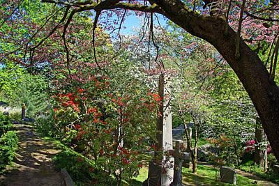 Photograph - In Oak Hill Cemetery by Cora Wandel