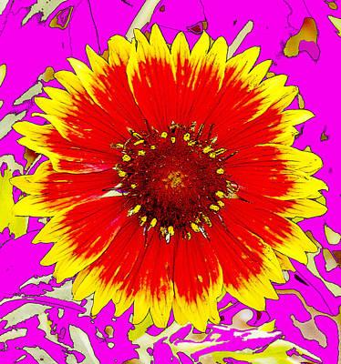 Urban Abstracts - Indian Blanket Wildflower by A Macarthur Gurmankin