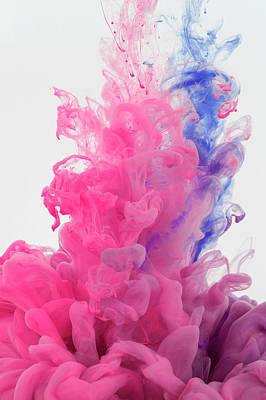 Photograph - Ink In Water On White Background by Yagi Studio