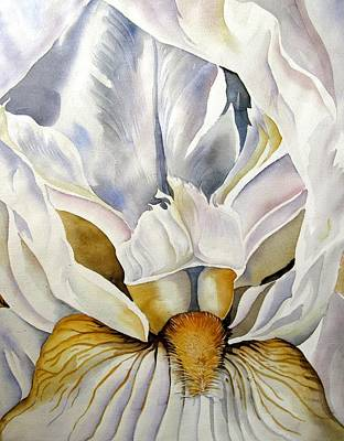 Into The Iris Art Print by Alfred Ng