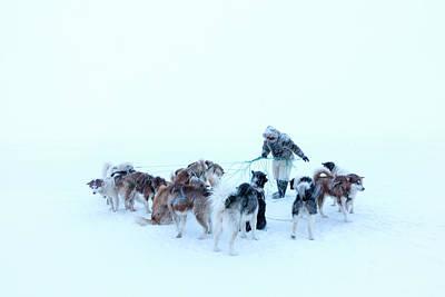 Inuit Hunter And Husky Dog Team Art Print