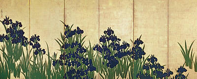 Edo Period Painting - Irises by Ogata Korin