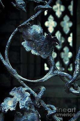 Photograph - Iron Gate Detail by Jill Battaglia