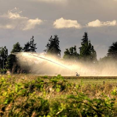 Jerry Sodorff Royalty-Free and Rights-Managed Images - Irrigation Sprinkler 25161 by Jerry Sodorff