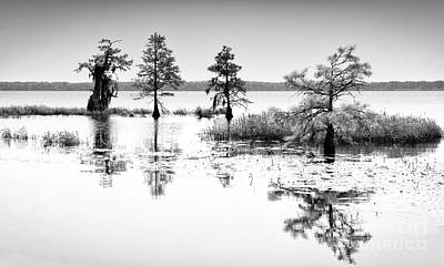 Croatan Photograph - Isle Of Peace - North Carolina by Dan Carmichael