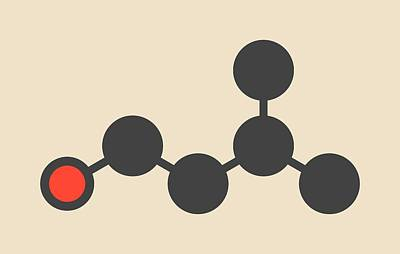 Truffle Photograph - Isoamyl Alcohol Molecule by Molekuul