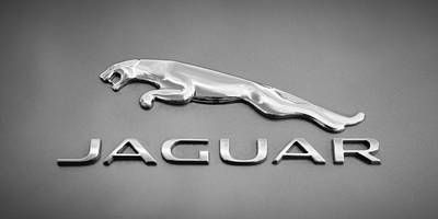 Black And White Images Photograph - Jaguar F Type Emblem by Jill Reger