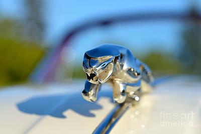 Coupe Photograph - 1957 Jaguar Xk 150 Drophead Coupe by George Atsametakis