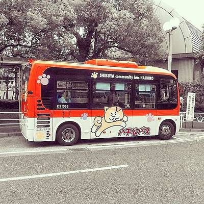 Plus Photograph - #japan ( #日本 ) #tokyo ( #東京 ) by Kenichi Iwai
