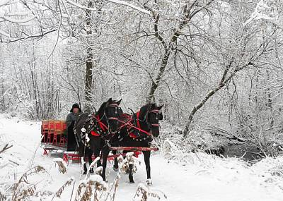 Photograph - Jingle Bells by Peggy  McDonald