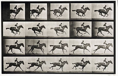 Jump Painting - Jockey On A Galloping Horse by Celestial Images