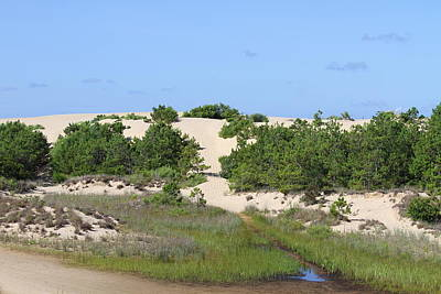 Sand Dunes Photograph - Jockey's Ridge by Cathy Lindsey