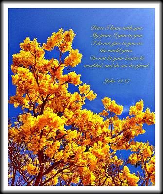 John 14 27 Art Print